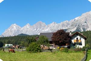 Schiestl-Hof - Ramsau am Dachstein: Urlaub am Bauernhof in